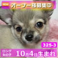 325_3_top
