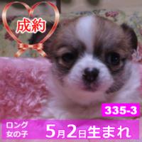 335_3_top